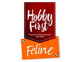 Hobbyfirst Feline
